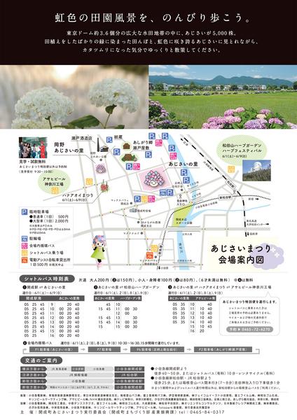 ajisai_2019ura.jpg